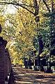 Aranjuez, jardines 1975 09.jpg