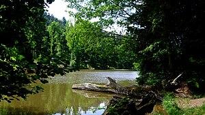 Burgundy - Arboretum de Pézanin