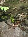 Archaggelos, Greece - panoramio (38).jpg