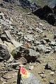 Argentina - Bariloche trekking 114 - trail markers (6798109937).jpg