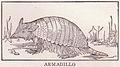 Armadillo page 150.jpg
