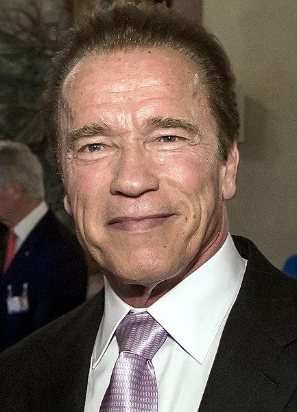 File:Arnold Schwarzenegger February 2015.jpg