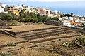 At Tenerife 2020 433.jpg