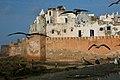At the Beach in Essaouira (4263501838).jpg