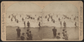 Atlantic City, Among the Bathers, by Griffith & Griffith.png