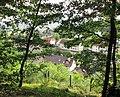 Ausblicke vom Pfarrberg - Blick auf die Siedlungshäuser an der Neueroder Straße - Meinhard-Grebendorf - panoramio.jpg