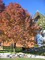 Autumn at the Chapel of the Resurrection 04.JPG