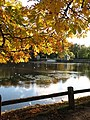 Autumn at the lakeside - geograph.org.uk - 1024951.jpg