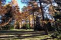 Autumn in Trentino Alto Adige 1.JPG