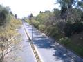Avenida Pellegrini Rosario 3.jpg