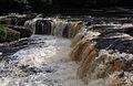 Aysgarth Falls MMB 34.jpg