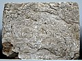 B10, Middle Persian Script, Inscribed Stone Block of Paikuli Tower.jpg