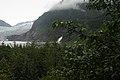 BOSQUES EN MENDENHALL - panoramio.jpg