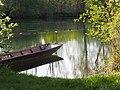 Baden-Württemberg, nördl. Taubergießen in Rheinnähe, Koordinaten 48.296902, 7.700371.jpg