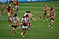 Ball is in dispute in Hawthorn-Essendon AFL match.jpg