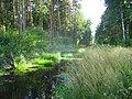 Baltezera iela 44, Baltezers, Ādažu novads, LV-2164, Latvia - panoramio.jpg