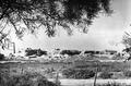 Bamboula från öster. Kition. Larnaca - SMVK - C01714.tif