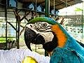 Bangabandhu Sheikh Mujib Safari Park-5.jpg