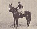 Banzai (racehorse), 1930.jpg