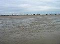 Beach Front, Greatstone on Sea - geograph.org.uk - 445404.jpg