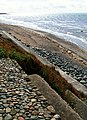 Beach Scene - geograph.org.uk - 47567.jpg