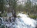 Bedwyn Brail - geograph.org.uk - 7377.jpg