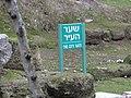 Beit Sha'arim, Beit Zaid 18.jpg