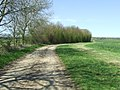 Bend In Farm Track (geograph 3506409).jpg