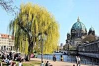 Berlin Cathedral from Vera-Brittain-Ufer.jpg