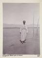 Bild från familjen von Hallwyls resa genom Egypten och Sudan, 5 november 1900 – 29 mars 1901 - Hallwylska museet - 91638.tif