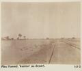 Bild från familjen von Hallwyls resa genom Egypten och Sudan, 5 november 1900 – 29 mars 1901 - Hallwylska museet - 91676.tif