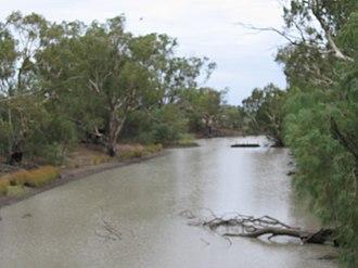 Billabong Creek - Billabong Creek at Moulamein.