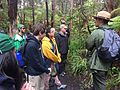 BioBlitz 2015 in Hawaii Volcanoes National Park (17866673412).jpg