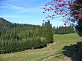 Blender - Allgaeuische Landschaft (Allgaeu Landscape) - geo.hlipp.de - 43477.jpg