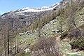 Blick zur Alpe d`Efra.jpg