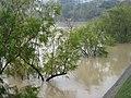 Blumenau - panoramio (13).jpg