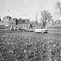 Bollenveld op het Weteringcircuit, Bestanddeelnr 909-4591.jpg