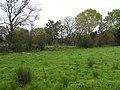 Boltnaconnell Townland - geograph.org.uk - 1536096.jpg
