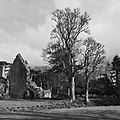 Border Abbeys 2016 - Dryburgh Abbey to Tweedbank (26100320875).jpg