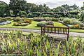 Botanic Gardens In Glasnevin (Dublin) (7951838440).jpg