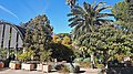 Botanical garden of Valencia 02.jpg