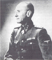 Branimir Altgayer.png