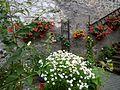 Braunfels - Garten mit Holzleitern-Deko.jpg
