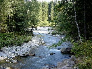 Breitach river in Austria (Vorarlberg) and Germany (Bavaria)
