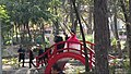 Bridge in the japan park in Mexico City.jpg