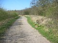 Bridleway and Barwick Wood - geograph.org.uk - 393111.jpg