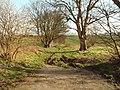 Bridleway leading to Streetly End - geograph.org.uk - 313049.jpg