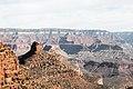 Bright Angel Trail, South Rim, Grand Canyon (33206757154).jpg