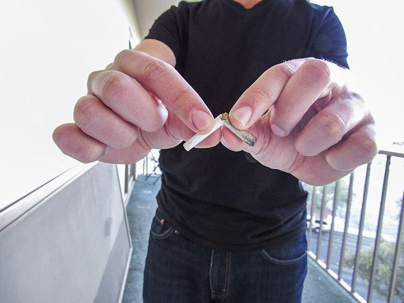 File:Broken Joint.jpg