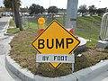 Bump by Florida DOT.jpg